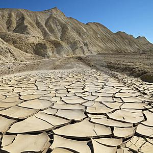 Cracked Desert Pond